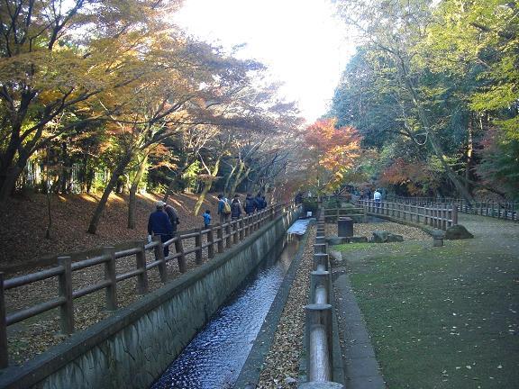 20131201ichikawa (8)