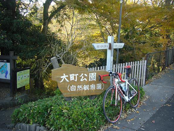 20131201ichikawa (9)