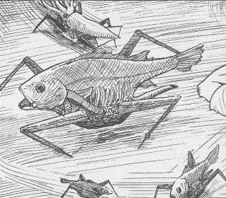 ギョ 魚の群れ
