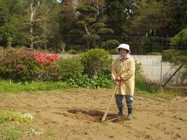 家庭菜園を楽しむ母
