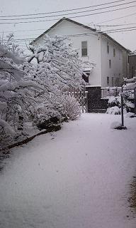 雪Photo2707