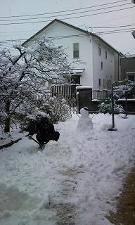 雪Photo2722