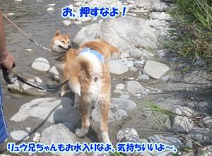 b_20120818_14.jpg