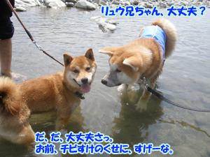 b_20120818_17.jpg