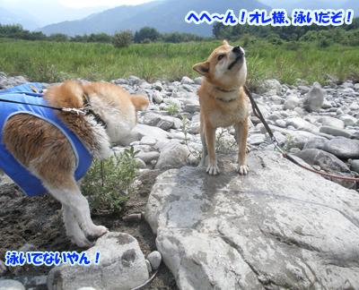 b_20120818_19.jpg