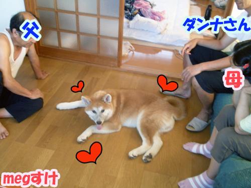 b_20120819_12.jpg