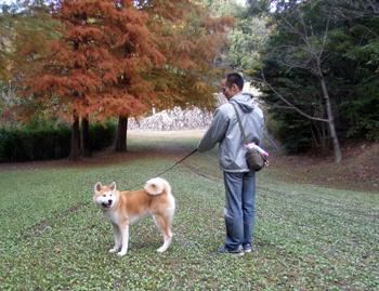 b_20121115_09.jpg