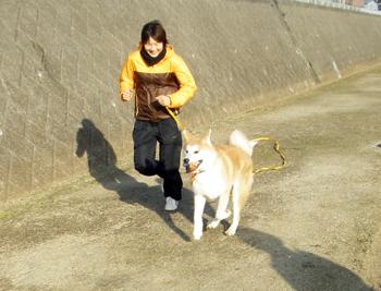 b_20121208_06.jpg
