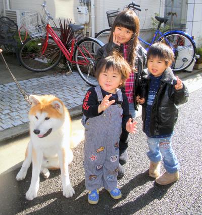 b_20121229_4.jpg