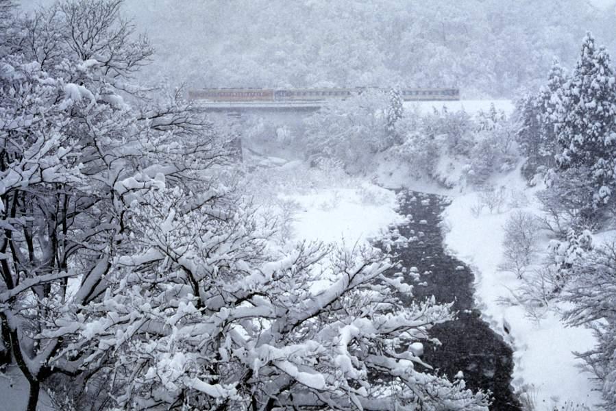 yonesaka119901b.jpg