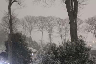 雪140208-2