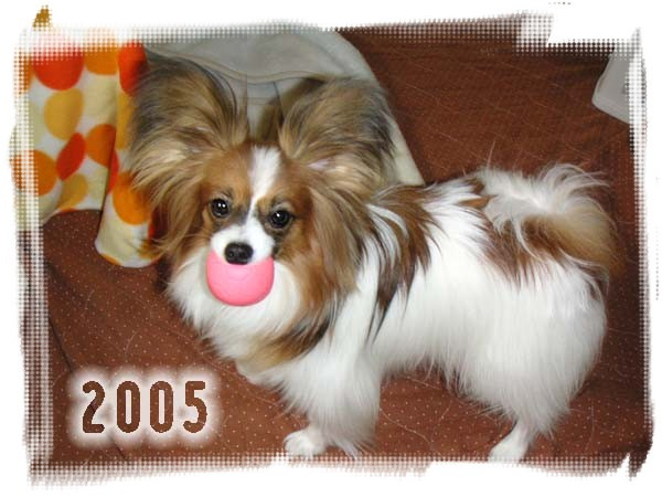 2005-02.jpg