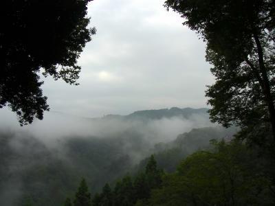 110821朝の景色