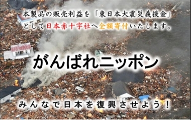 FXあきの楽楽FX自動売買実践記録!(為替初心者向け)-がんばれニッポンFX
