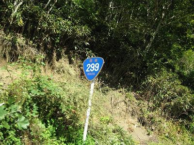 国道.jpg