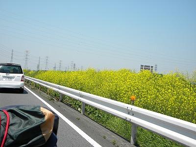 2010.05.3.4コヨーテキャンプミーティング 013.jpg