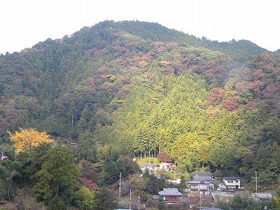 2011-11-14吾野~名栗~青梅 005.jpg
