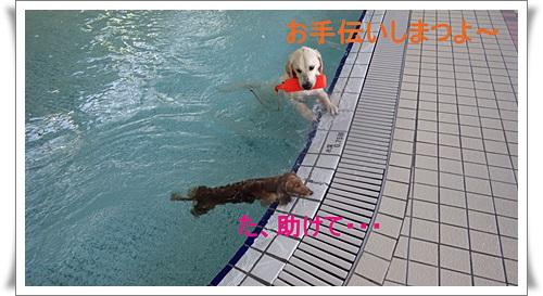 60_201412130308276bc.jpg