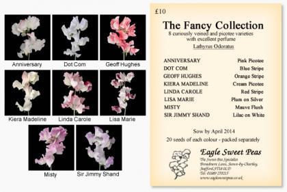 Fancy_Collection_convert_20140217195424.jpg