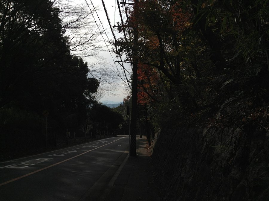 20141207IMG_2447.jpg