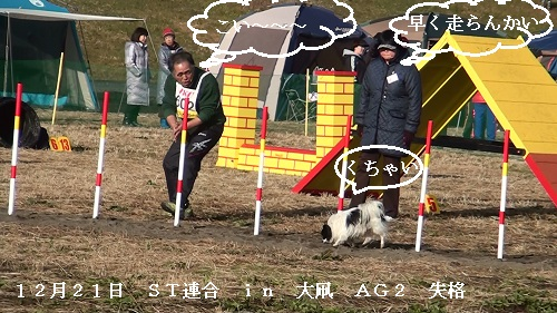 20131221084419(1).jpg