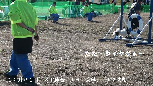 20131221130549(1).jpg