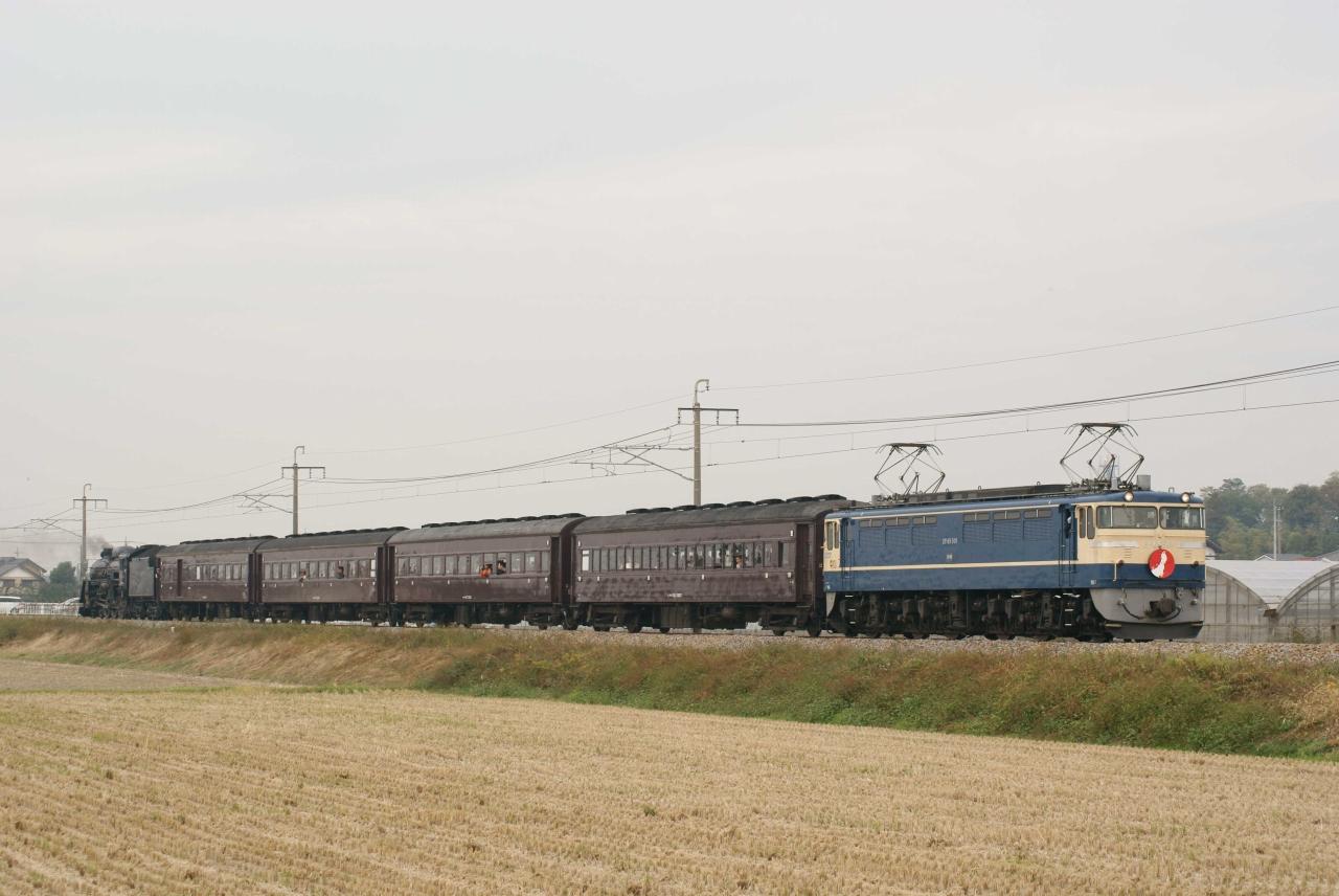 s-DSC02517G.jpg