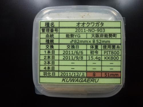 能勢YG♀51.0