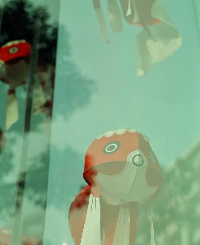 空飛ぶ金魚
