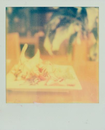1346 焼きドーナッツ