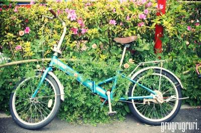 自転車埋もれて