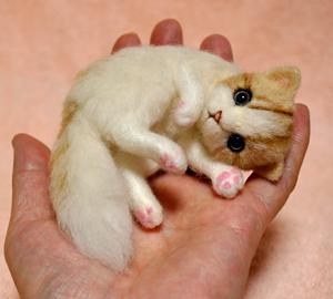 白薄茶猫140203 009