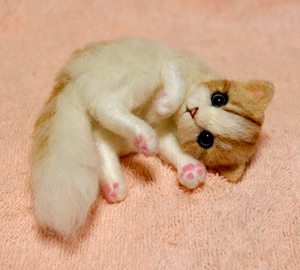 白薄茶猫140203 012
