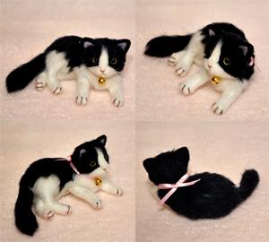 ちび猫5匹2140205 007