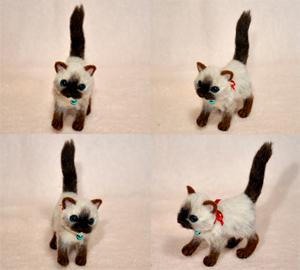 ちび猫5匹2140205 021