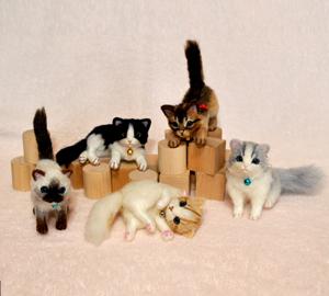 ちび猫5匹140205 011