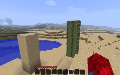 砂漠だった