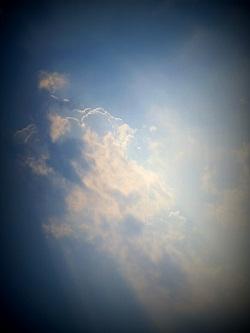新宿と池袋の間で…(仮)空
