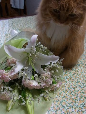 お花とサム