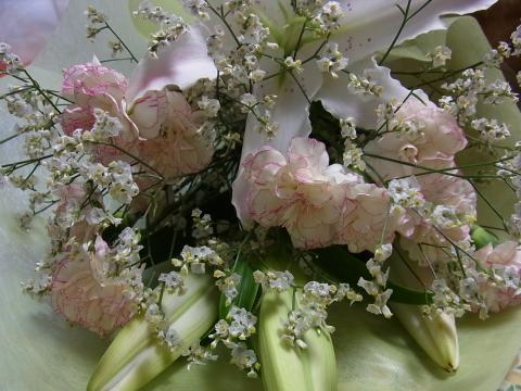 マドさんから頂いたお花