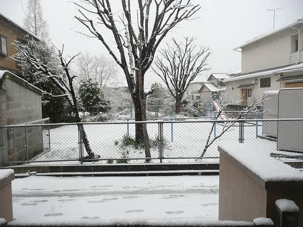 雪2月8日-s