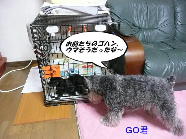 あさひっ子2月7日1-s