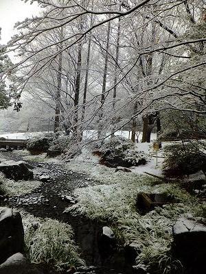 Snow in Tokyo, Sanshi-no mori Park