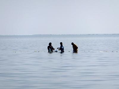 モルディブの漁