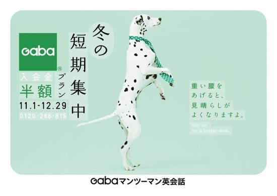 GABA201411-2.jpg