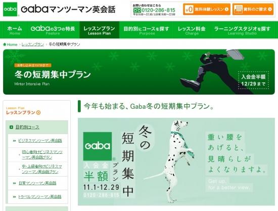 GABA2014111-1.jpg