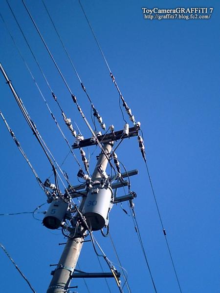 toycamera:電線でござる