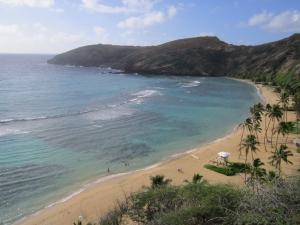 ハワイ+033_convert_20111115230349