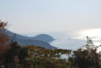 名田庄からみた景色