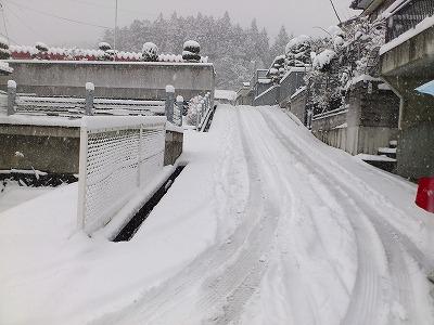 2011225雪-s